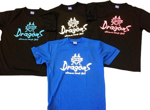 ドラゴンズ キャンプ 日 中