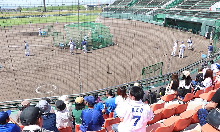 イレブンスポーツ 中日